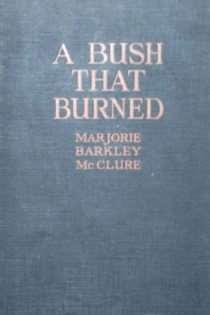 A Bush that Burned