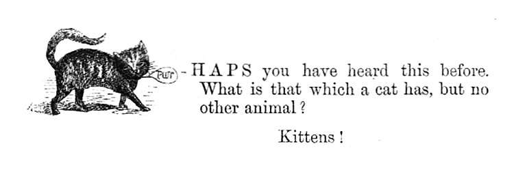What is that which a cat has, but no other animal? Kittens!