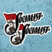 Set Two Socialist Large Vinyl Stickers | Edwardian Socialism | Retro Socialism, Equal Opportunity Flag for Car Laptop Water Bottle Etc