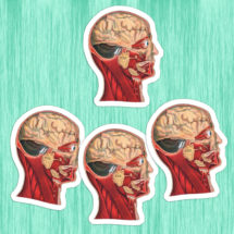 Medical Head #2 Sticker Set | 4 Vinyl Color Vintage Human Anatomy Stickers | Antique Anatomical Edwardian, Stocking Stuffer Small Gift